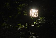 Lichtkunstpfad Mülitobel